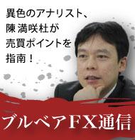 ブルベアFX通信のイメージ